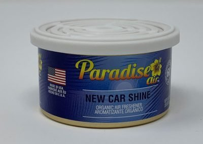 New Car Shine